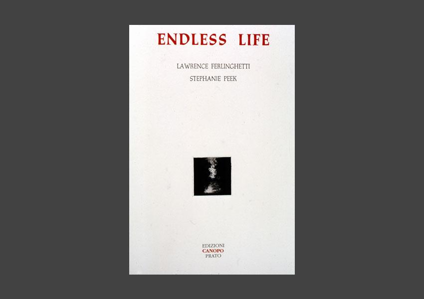 books_endlesslife_1.jpg