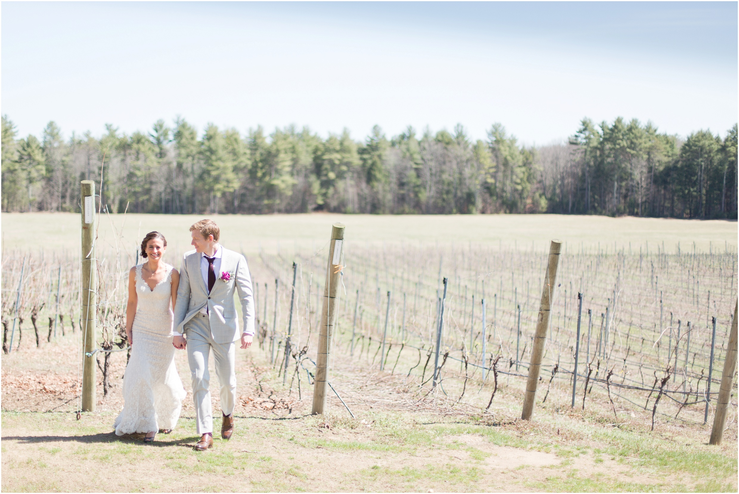 Southern New Hampshire Wedding Photographer  | Vineyard Wedding, Grape Vines, Flag Hill Winery Lee New Hampshire | Amy Brown Photography