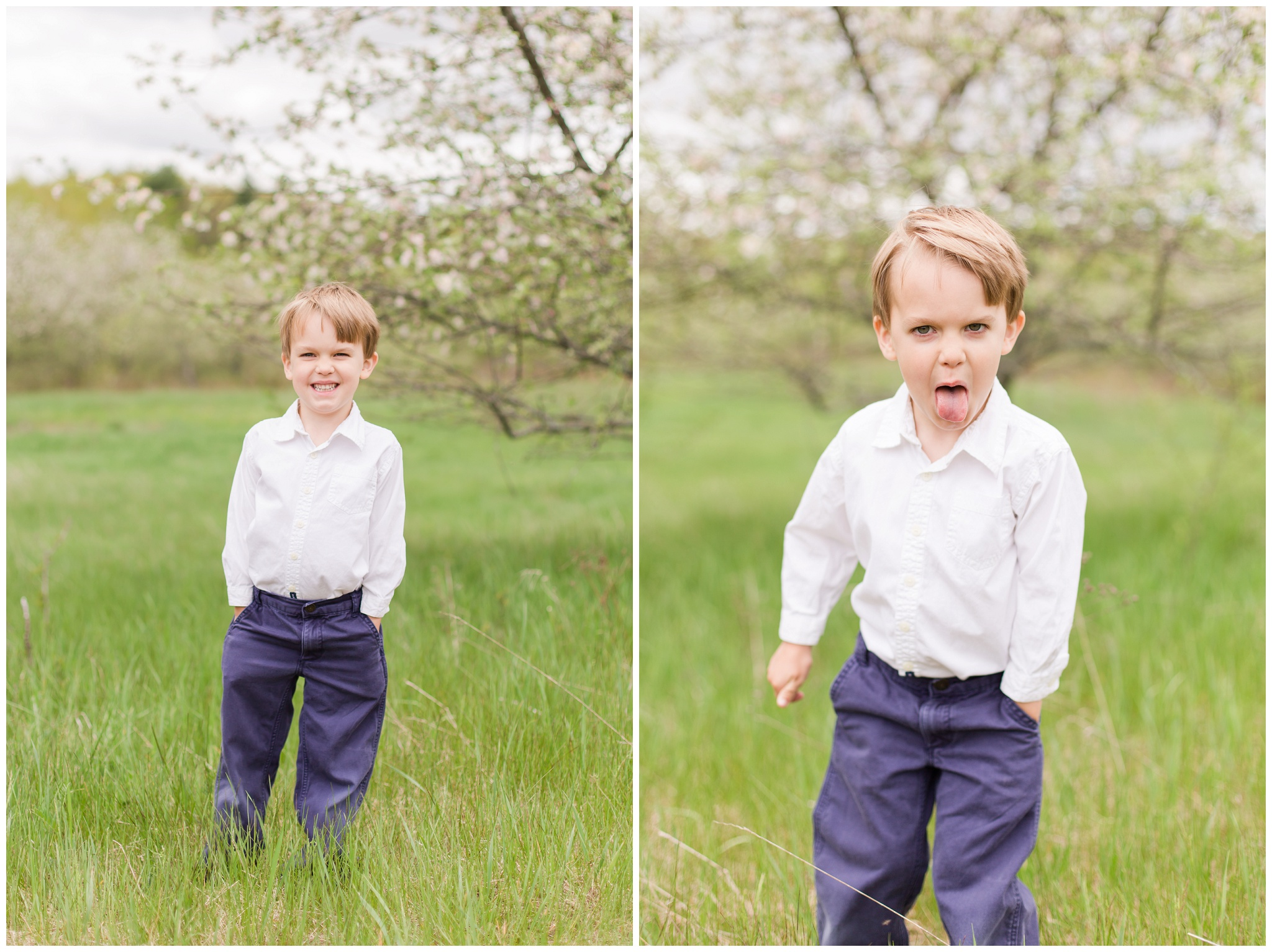 New Hampshire Wedding Photographer | Apple Blossoms | Epping, NH