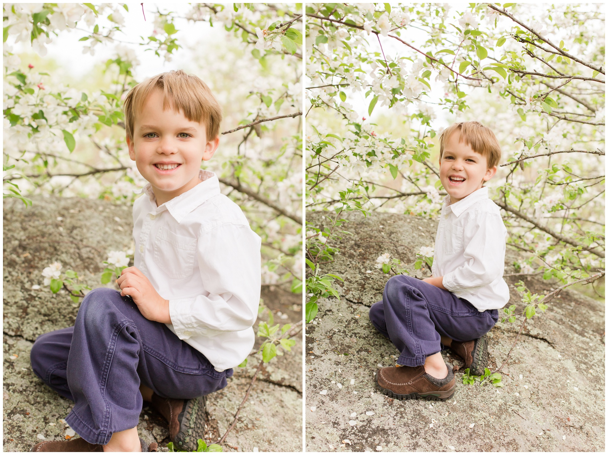 Epping New Hampshire Wedding Photographer | Apple Blossoms | Lee NH