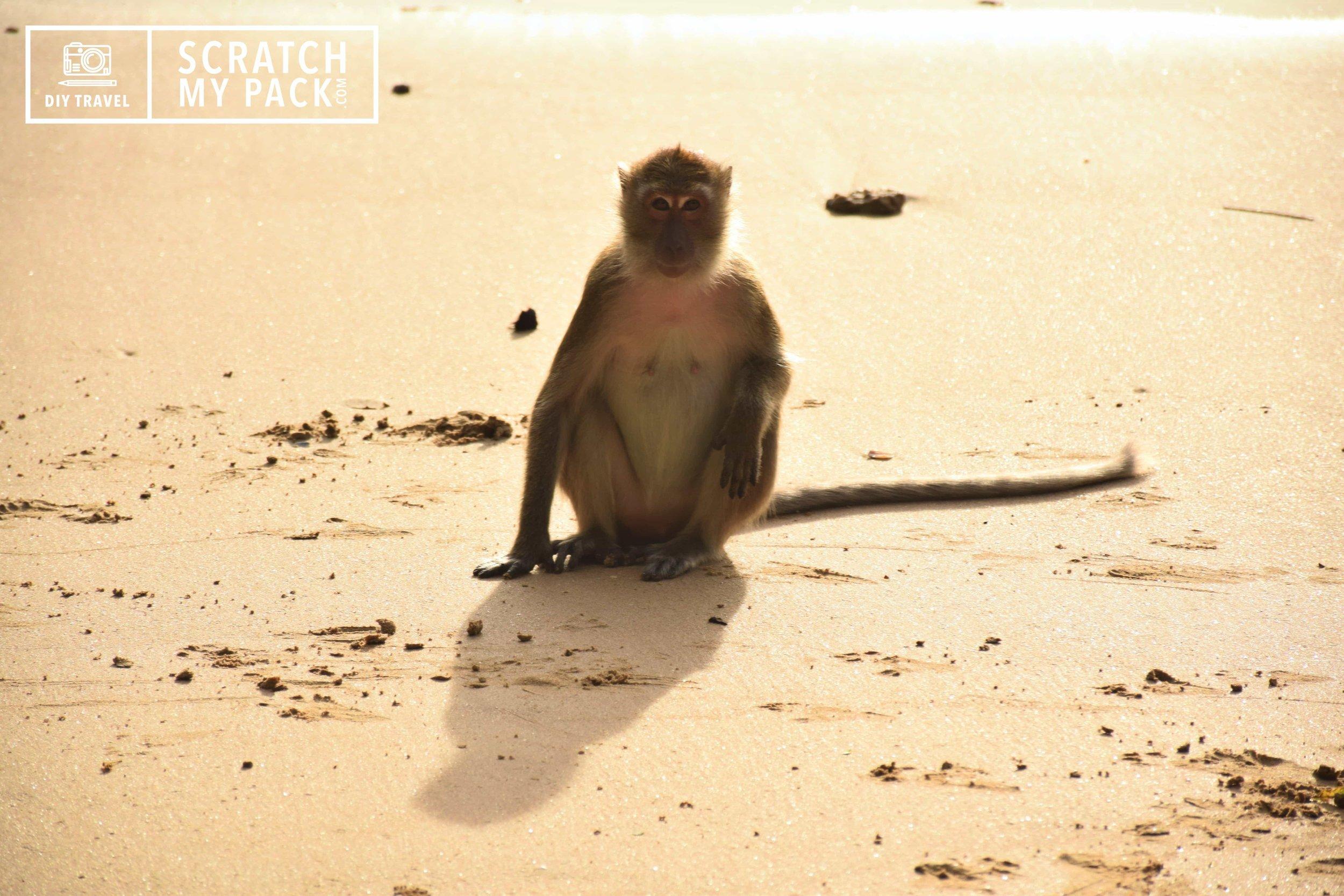 Monkey Hill, Au Nang