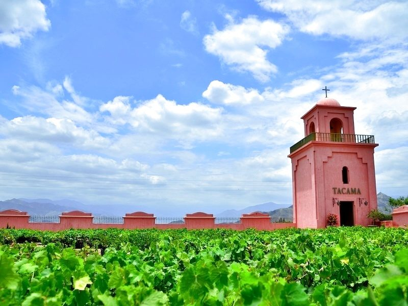 Pisco Tour    - Cost $35 -  The tour lasts 3.5 hours and includes lunch. You will visit three winery's where Pisco and red wine are both produced using ancient techniques. At all locations you will get to try the wine and Pisco. Click the link above for more information.