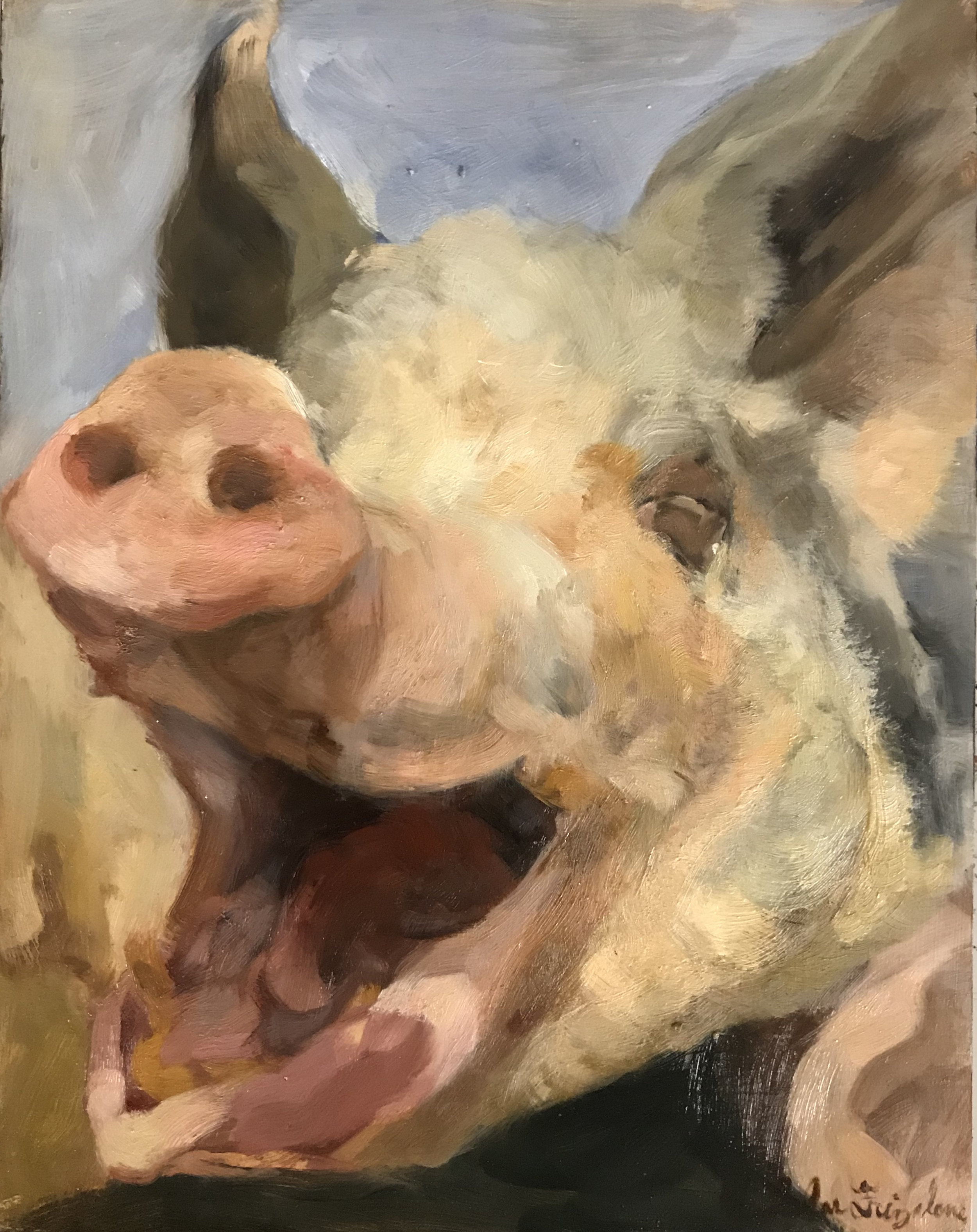 Blissful Hog