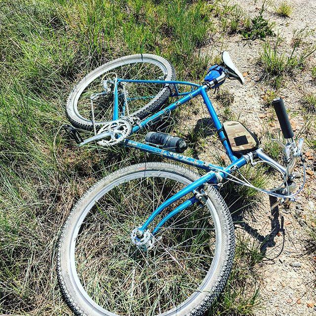 Blue #galluscycles in #bluestem. #takinabreak  #smoothlube #keepitquiet #ridinggravel #parkercounty