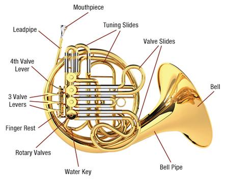 horn diagram.jpg