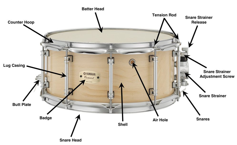 snare drum diagram.jpg