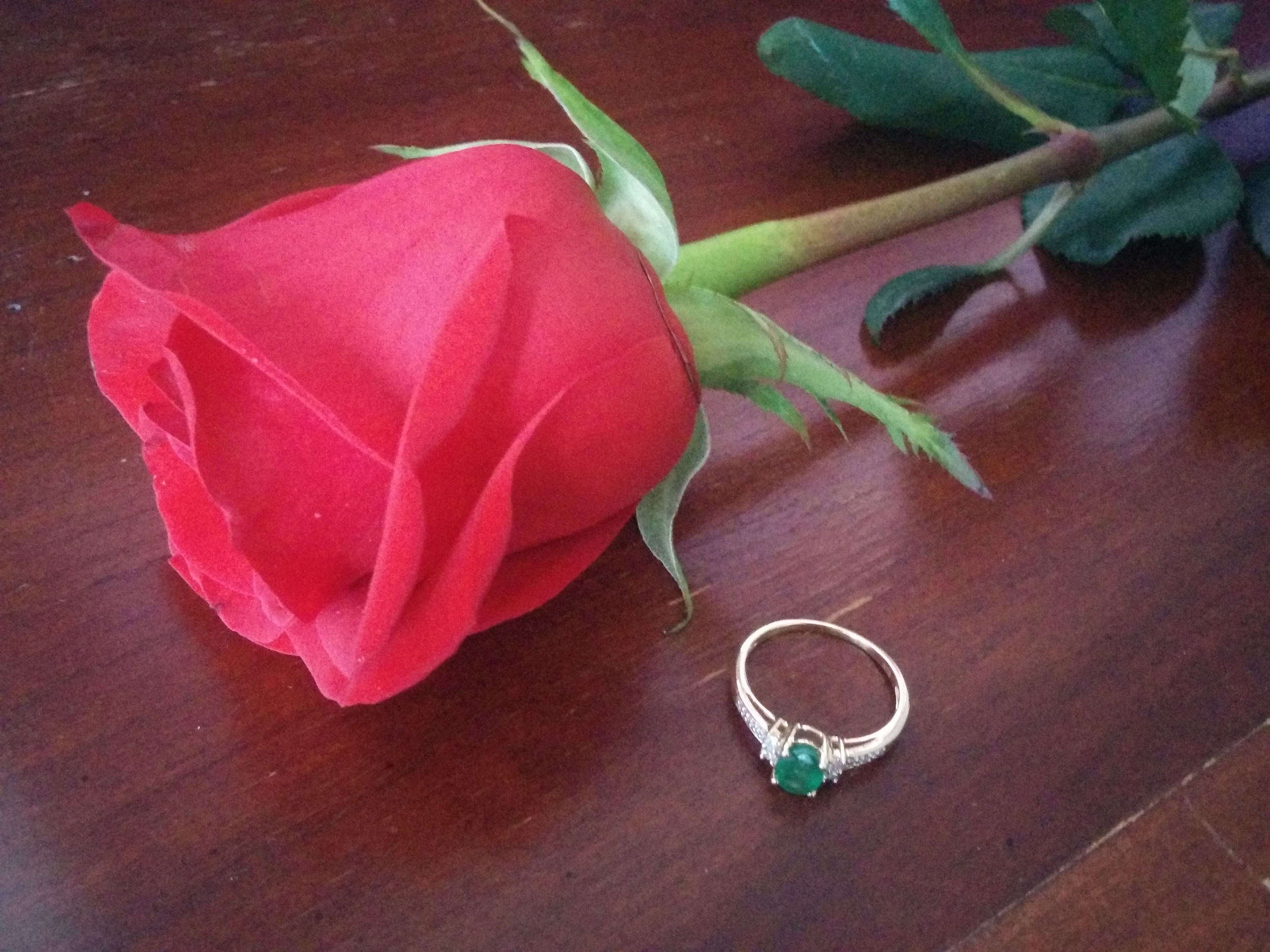 The ring and a rose. Cliche, I know. You hopefully only get married once. Let me have this.