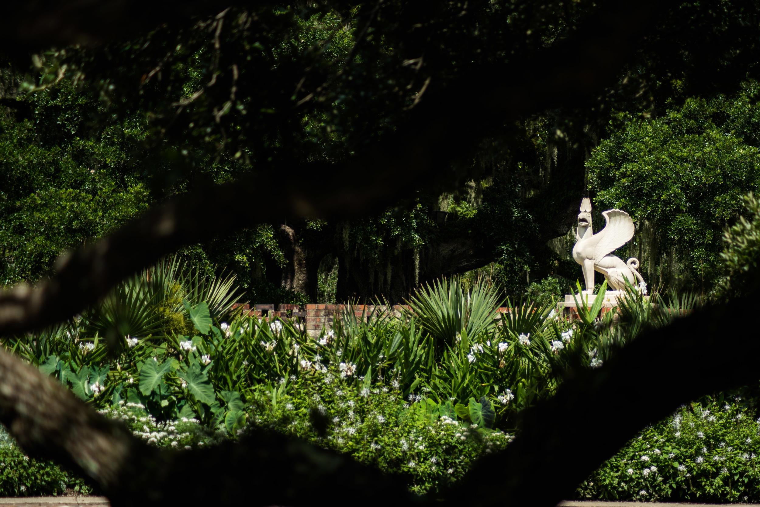 brookgreen garden myrtle beach-4.jpg