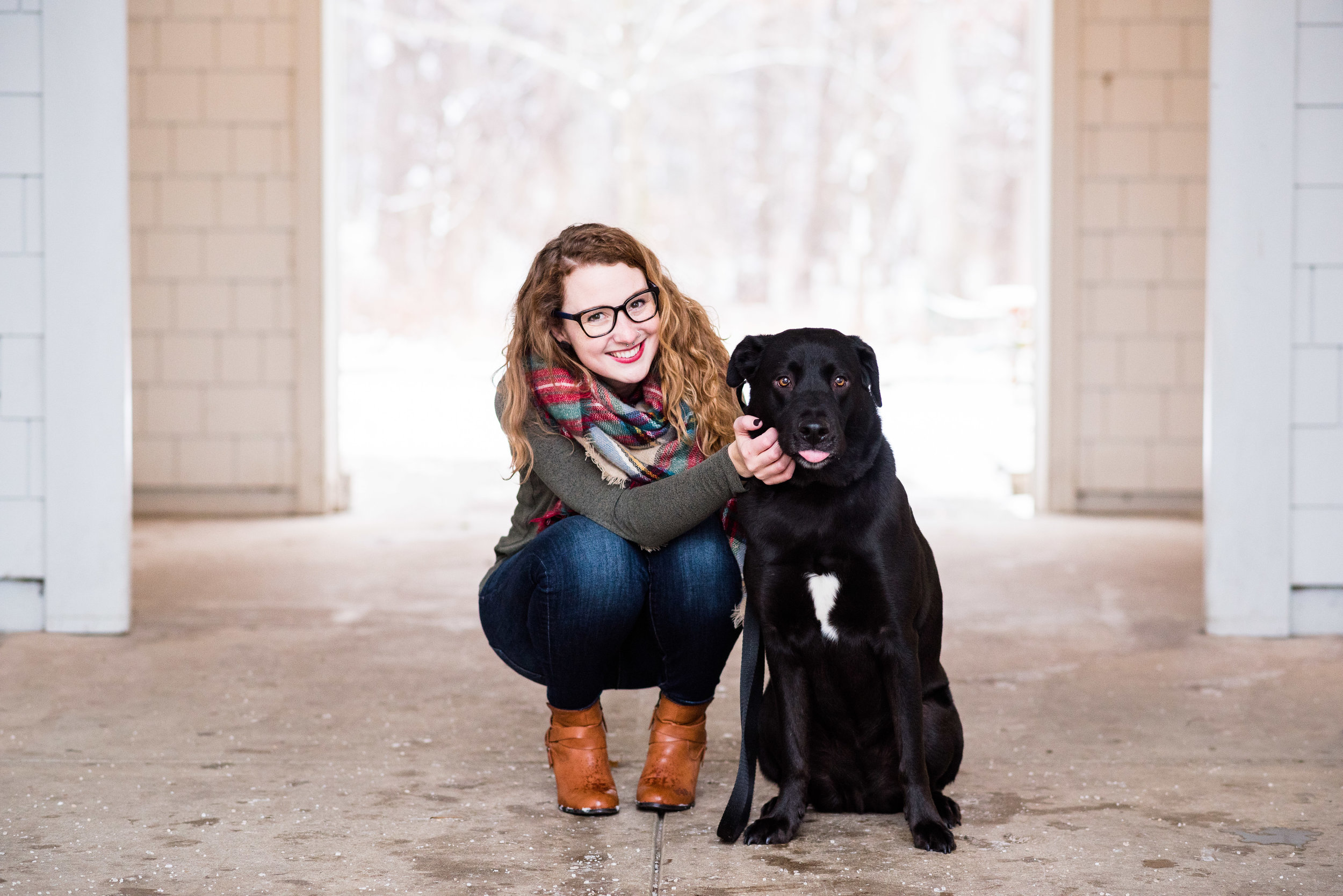 black lab pet photographer