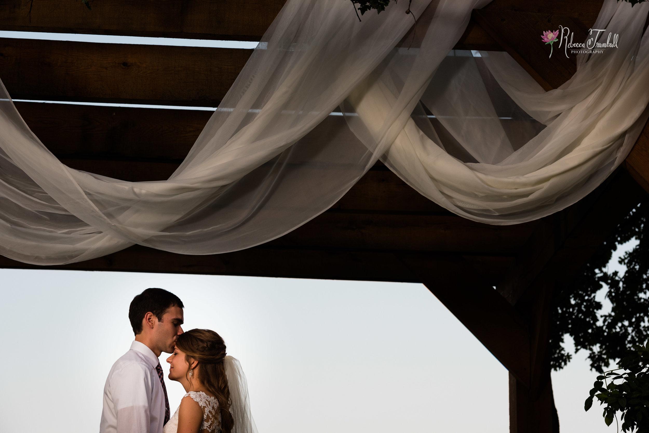 toledo area wedding photography-27.jpg