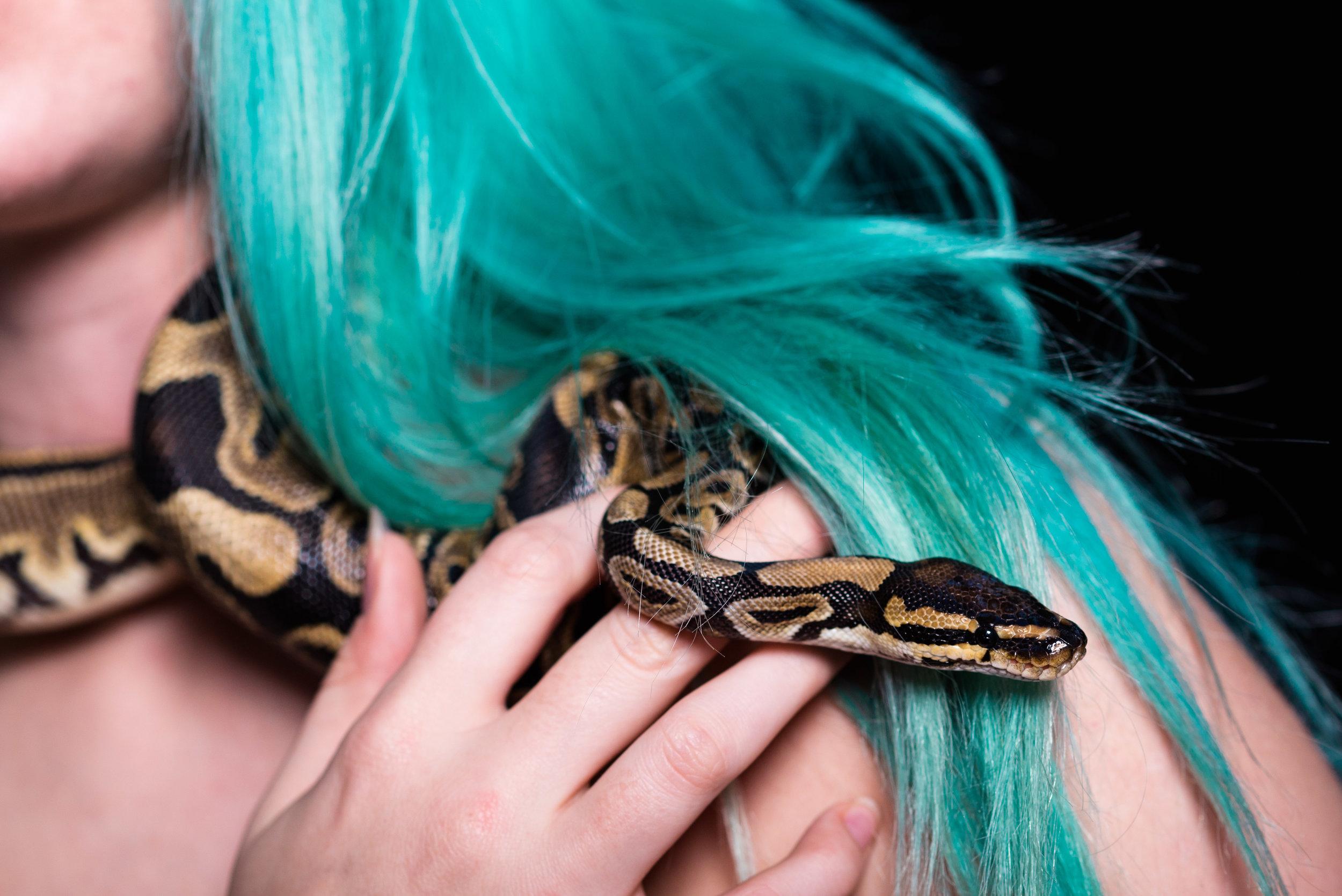 snake themed photo shoot