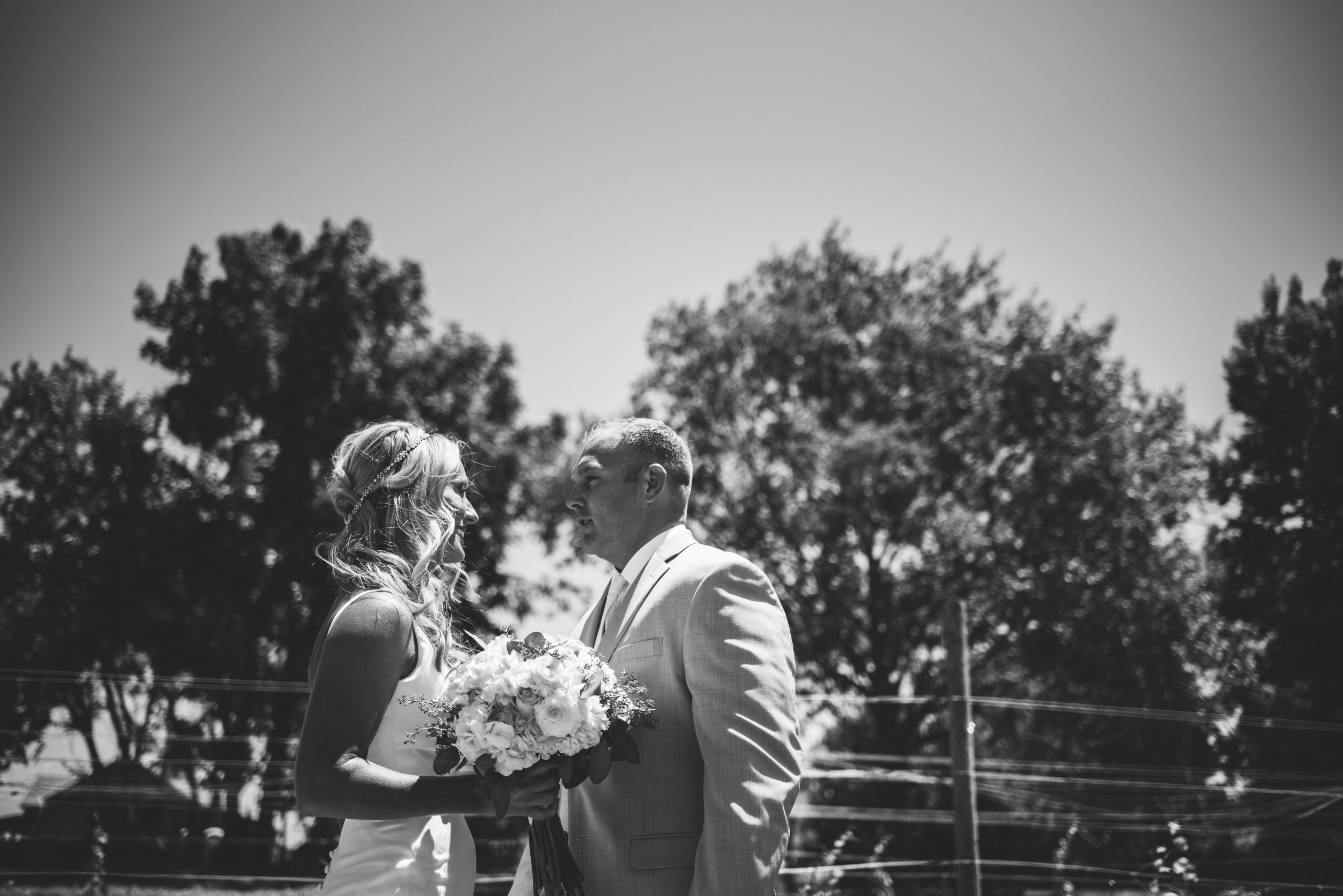 sandusky ohio wedding photography-12.jpg