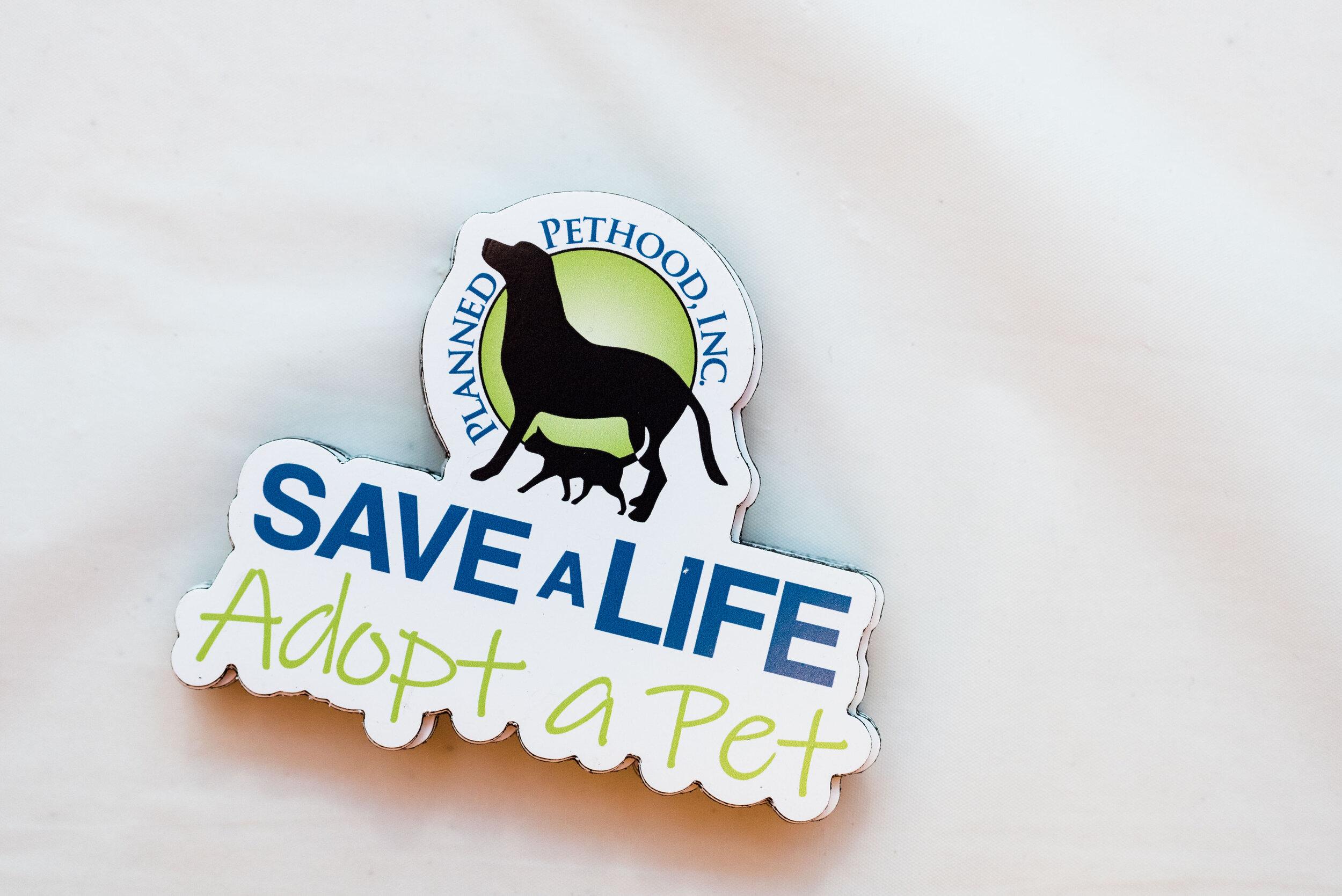 toledo area pet photography pet adoption-9.jpg