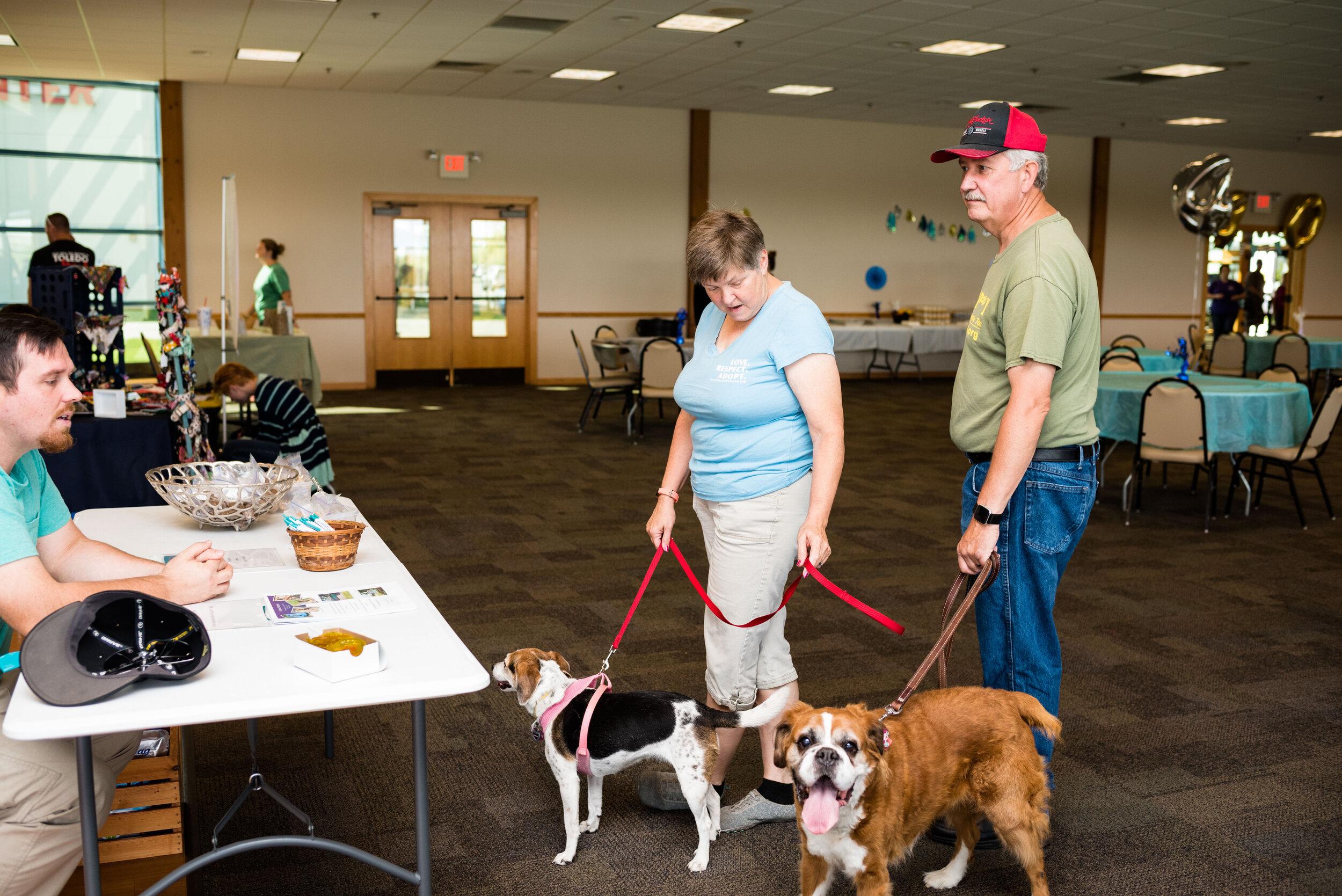 toledo area pet photography pet adoption-14.jpg