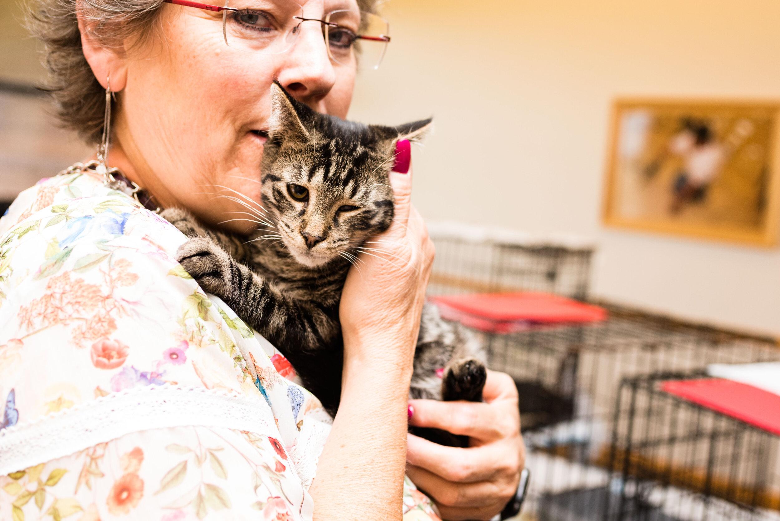 toledo area pet photography pet adoption-36.jpg