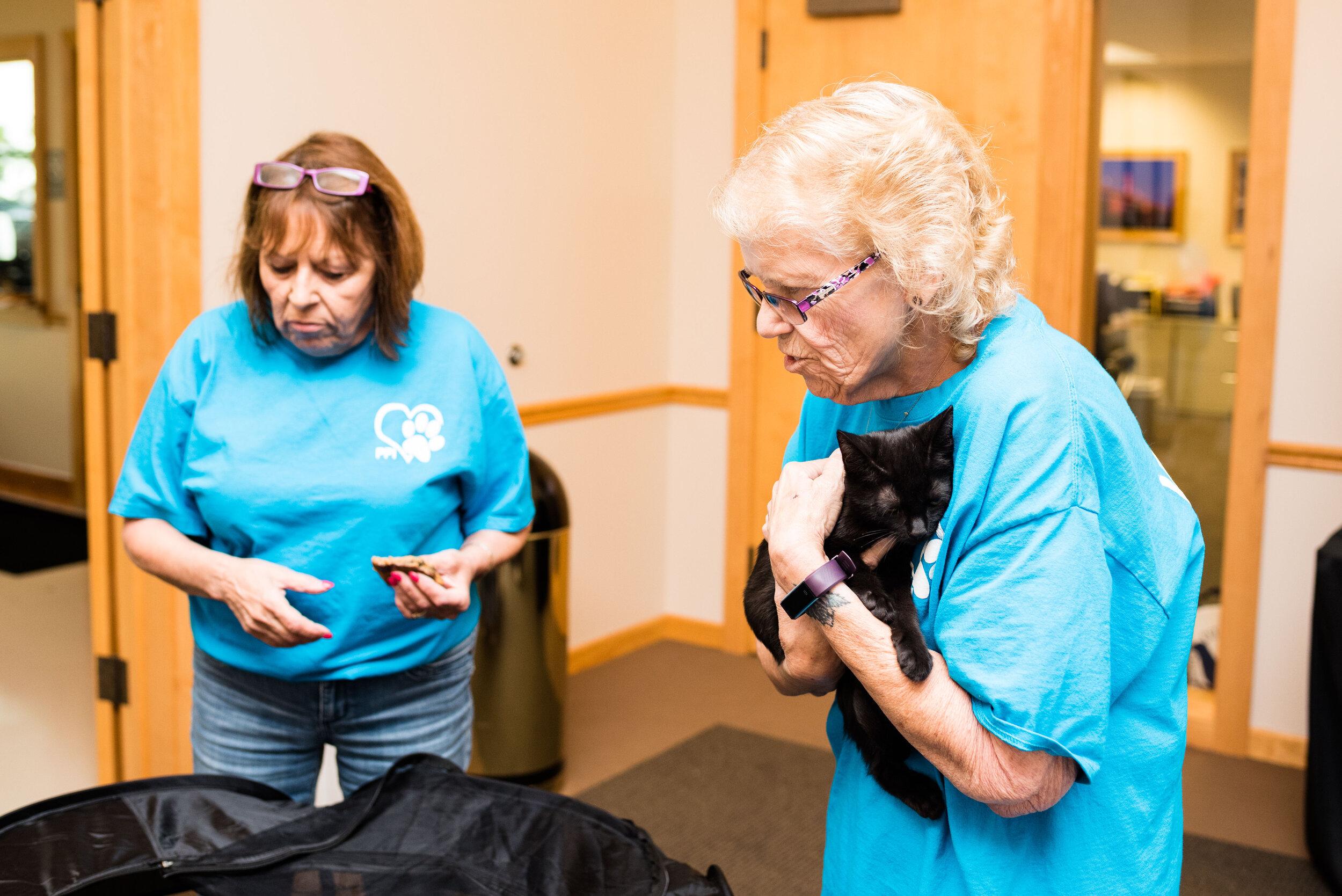 toledo area pet photography pet adoption-35.jpg