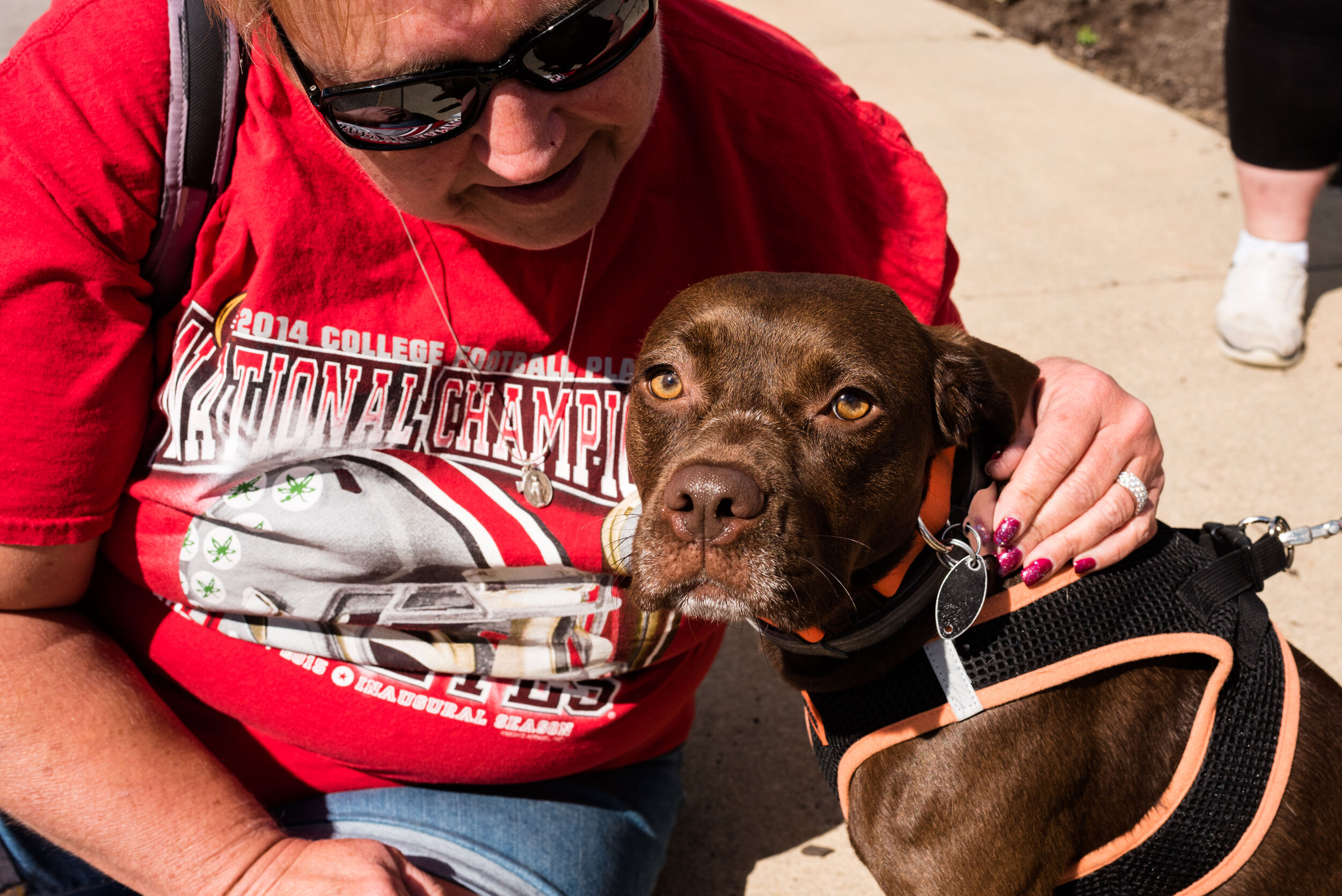 toledo area pet photography pet adoption-39.jpg