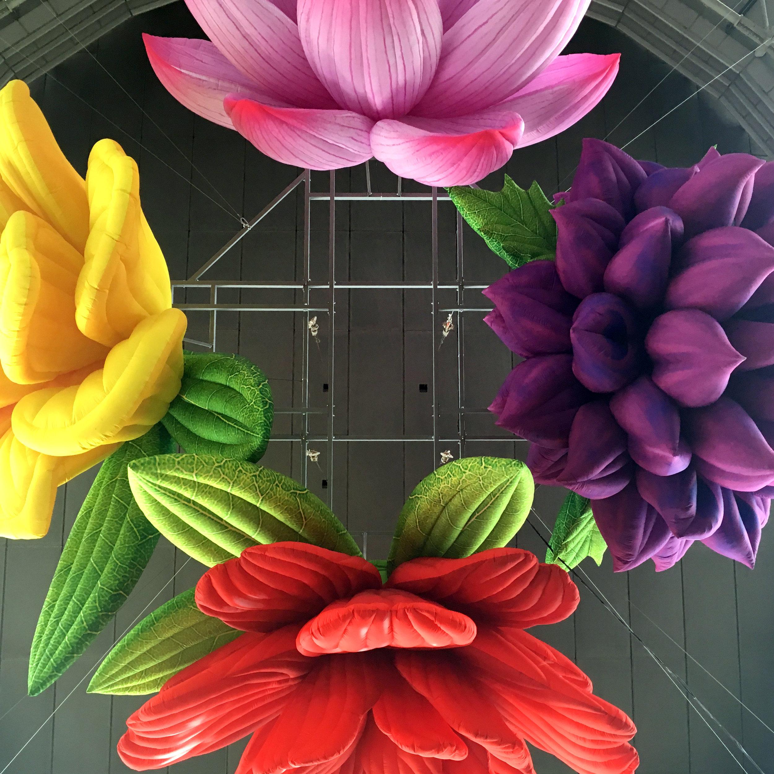 RAN_Flowers.jpg