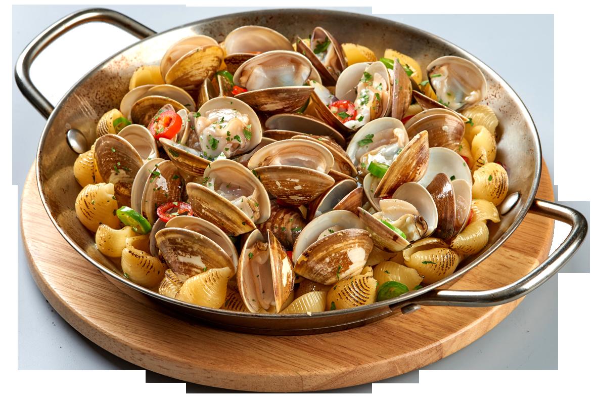 白酒蛤蜊貝殼烤麵 $ 260