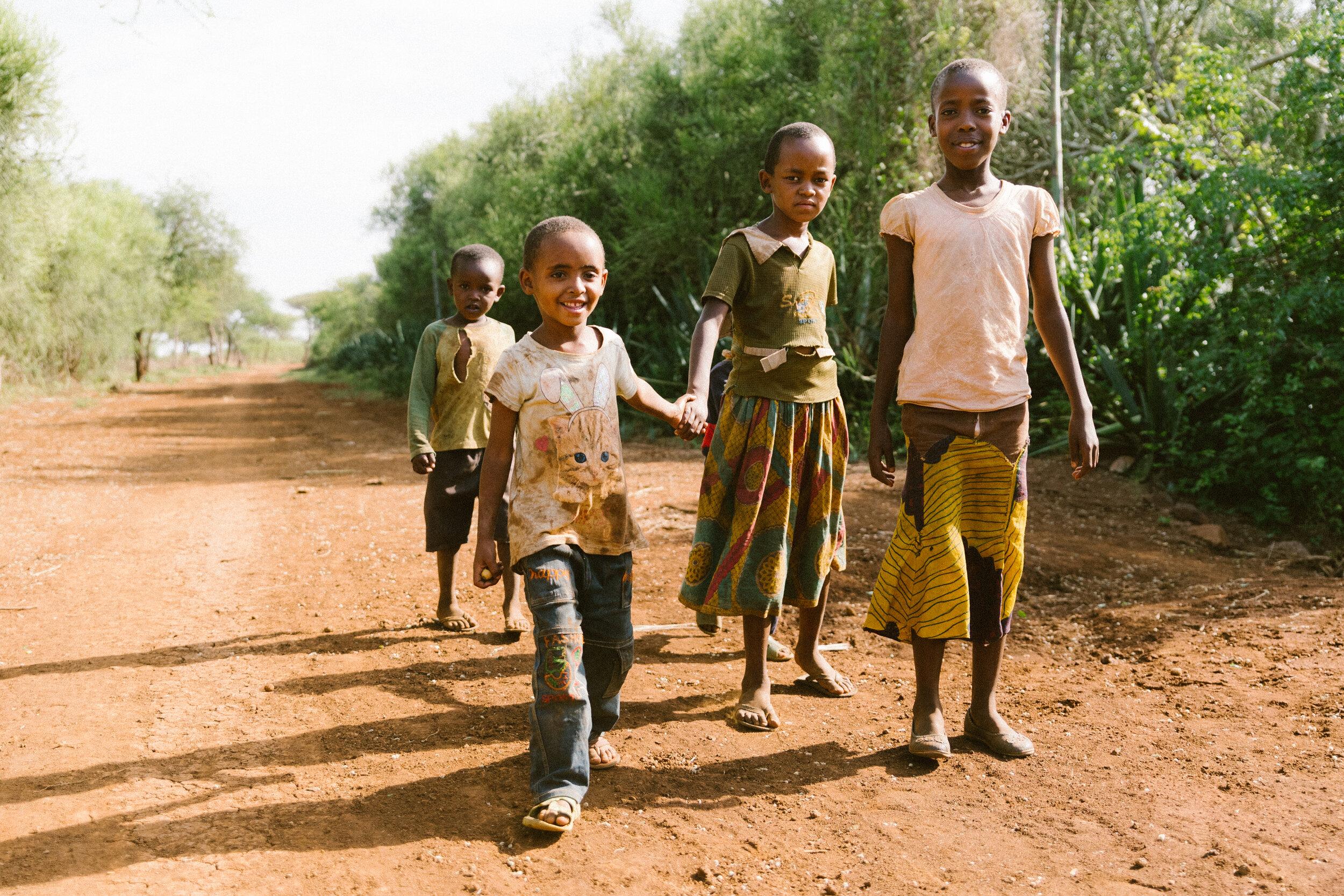 RAVI_VORA_AFRICA_HOOPOE__AV_2210.jpg