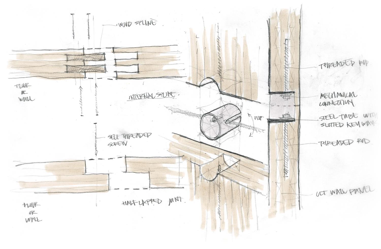 Structural Concept Sketch 02 / CLT Spline Studies