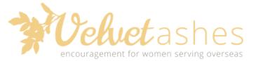 velvet ashes blog
