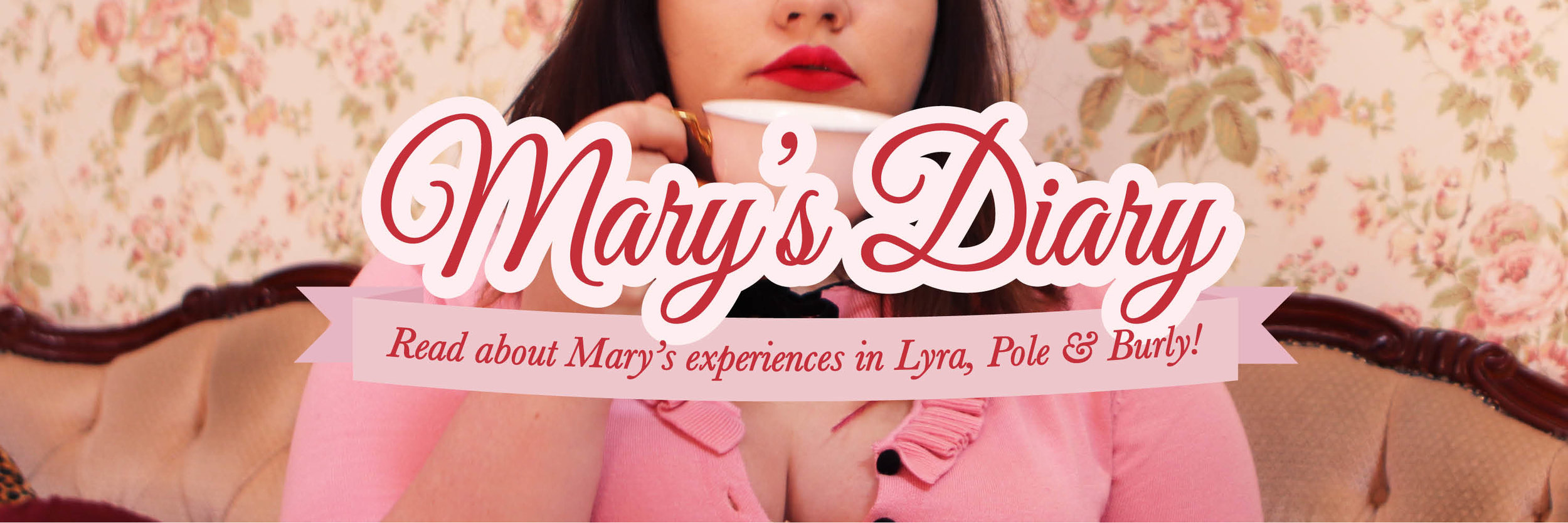 marys-dary-banner.jpg