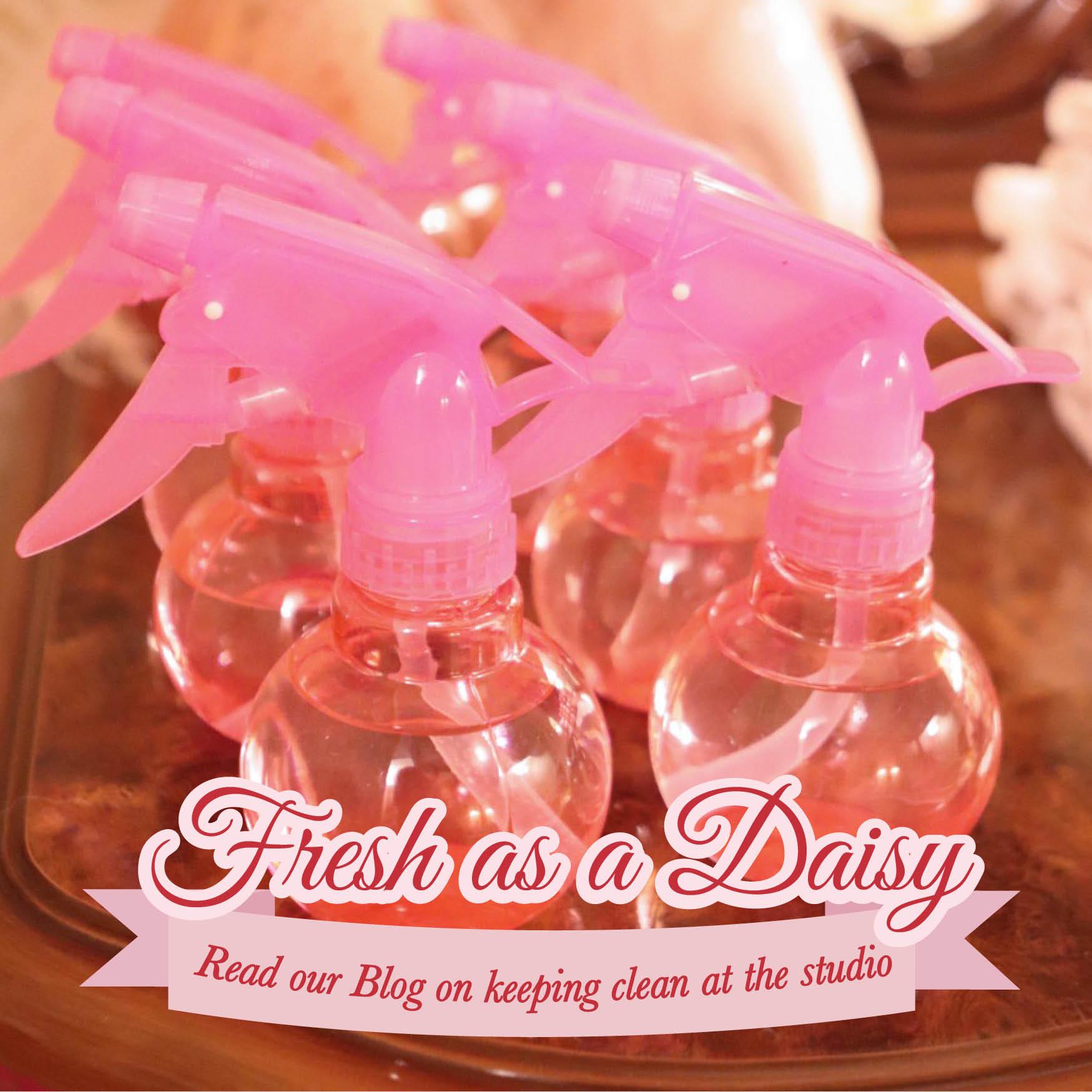 frsh-daisy.jpg