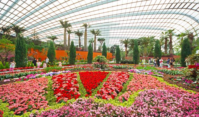 Flower-dome-Singapore.jpg