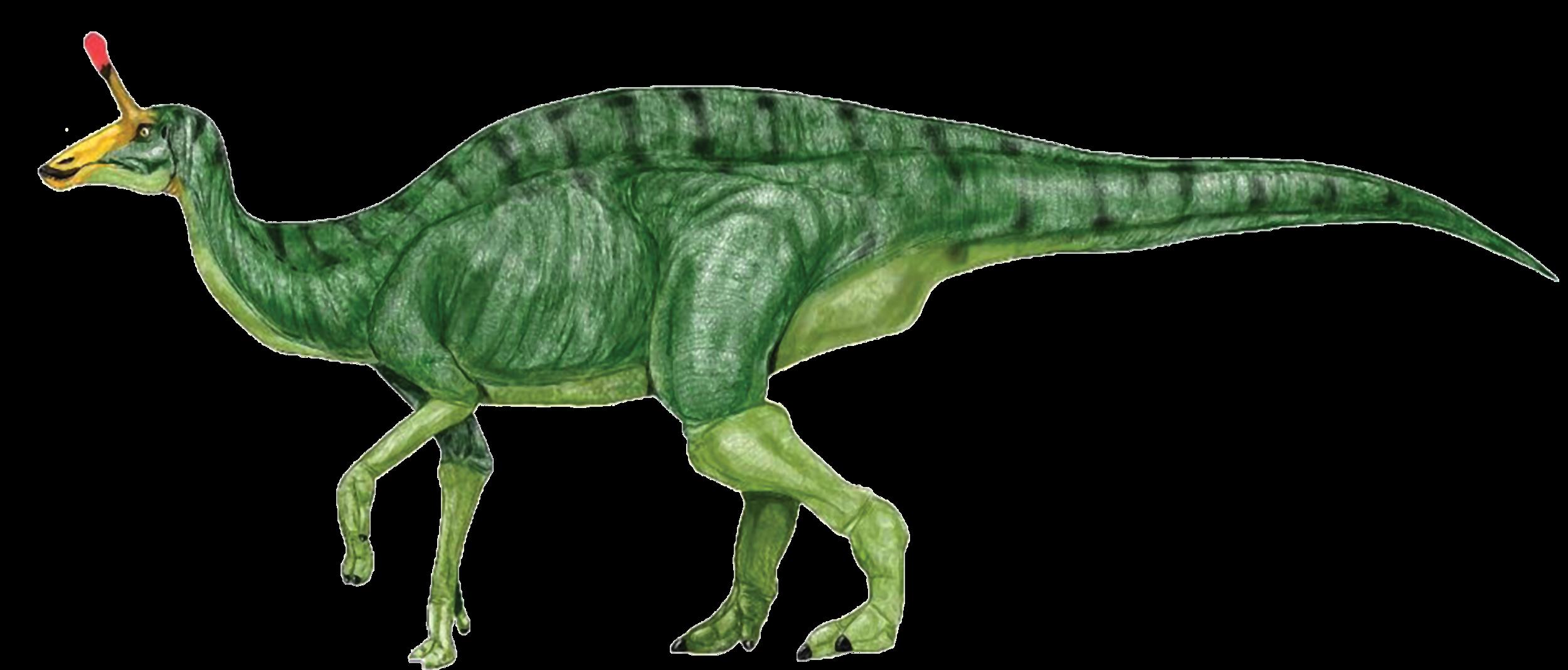 Green-dinosaur-clipart-image-8.png