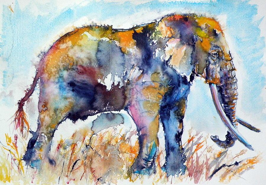 6-colorful-elephant-kovacs-anna-brigitta-1.jpg