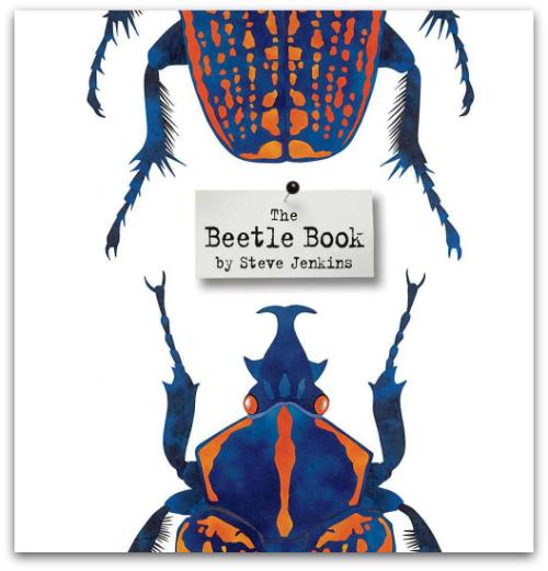 Beetle-Book-Cover.jpg
