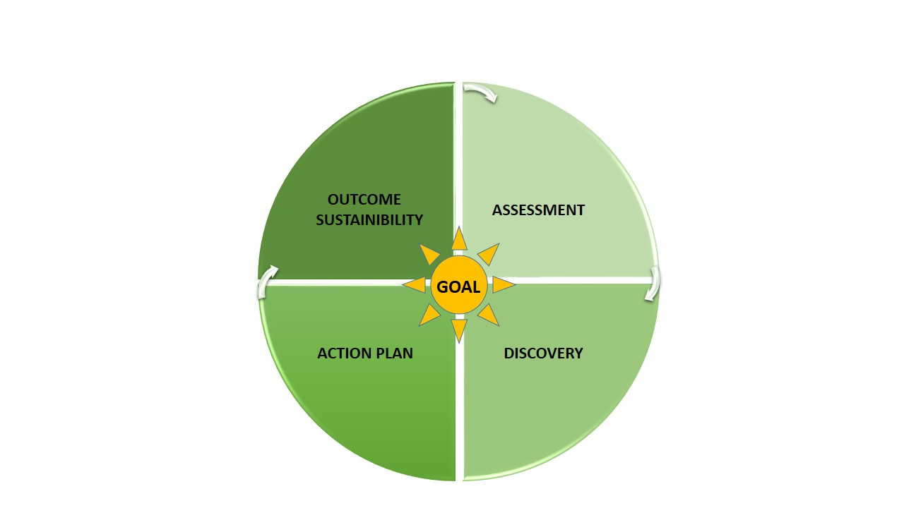 basic coaching process model 8.6.jpg