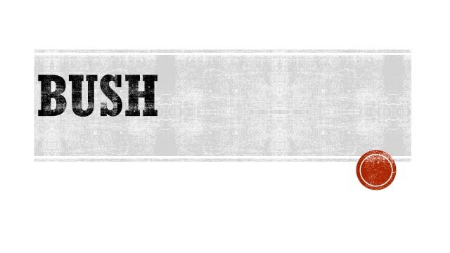BUSH.jpg