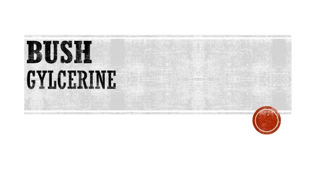 BUSH - GLYCERINE.jpg