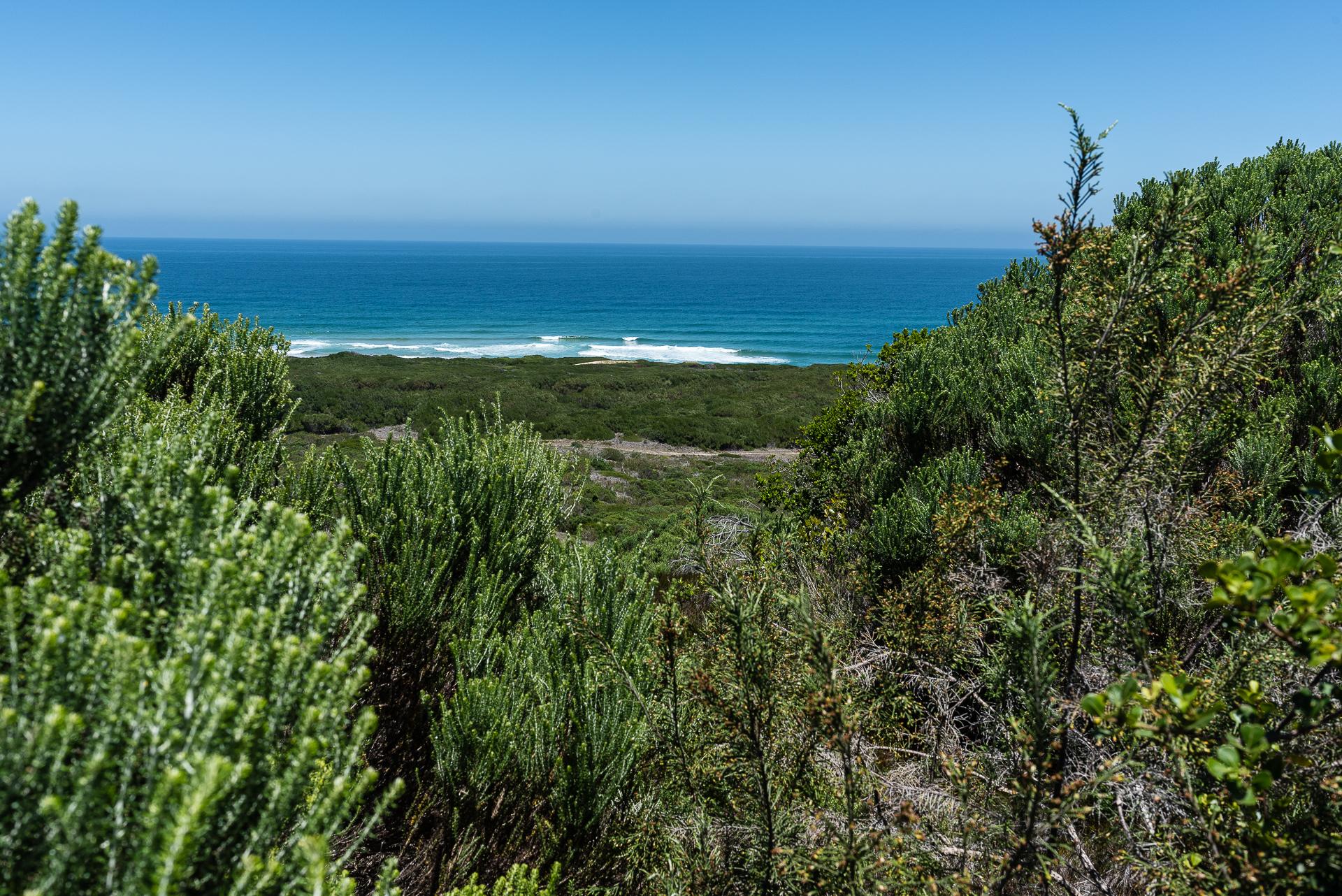 Goukamma Nature Reserve, South Africa