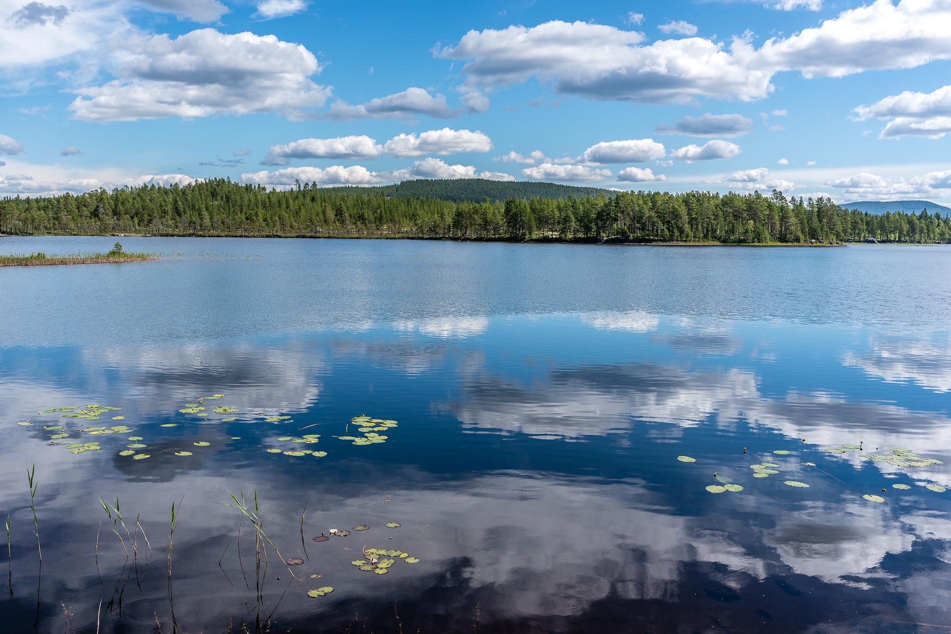 Lake view, Sweden