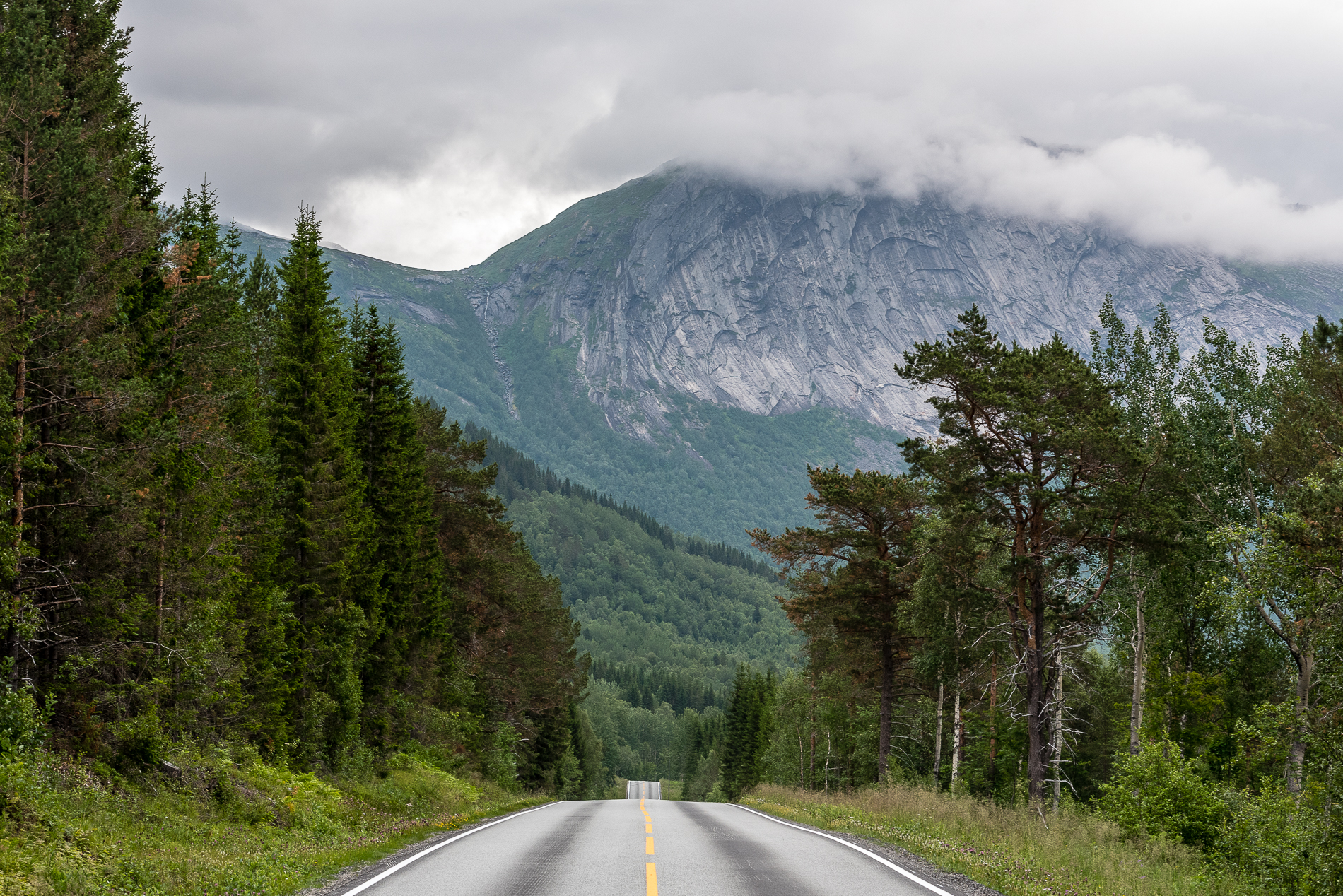 Carry On, Norway