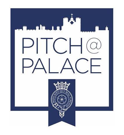 2 pitch of palace .jpg