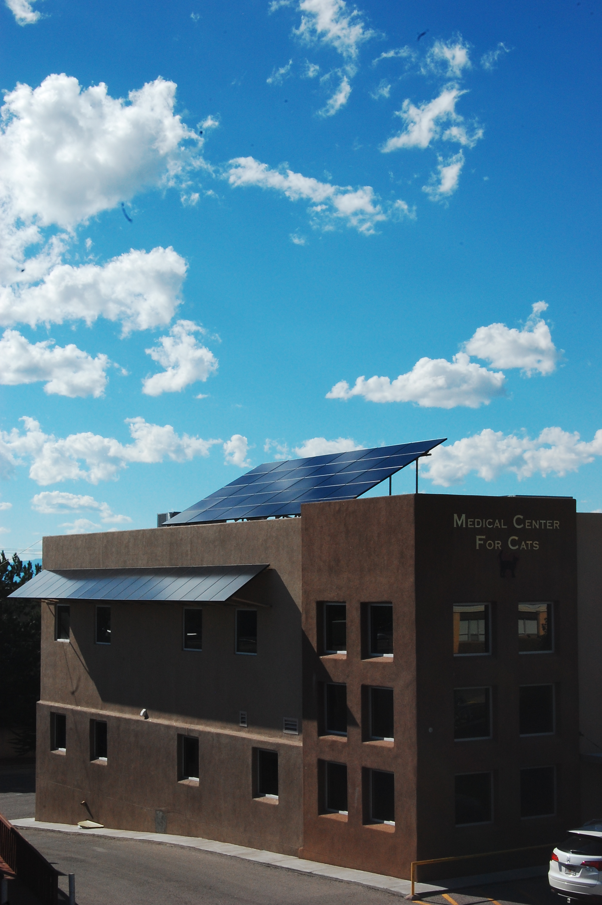 Solar panels on the feline hospital roof and south wall.