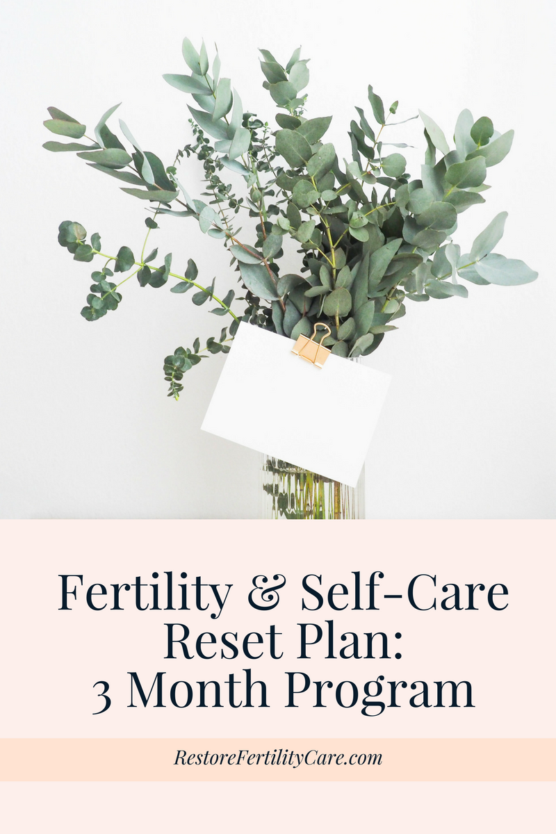 A 3 month plan to prioritize health, fertility, and self-care. Photo by  Helena Hertz on  Unsplash