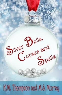 SBCS Kindle Cover.jpg