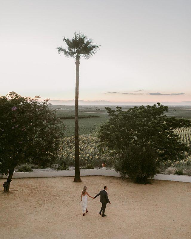 Misty strolls in Seville 🌄