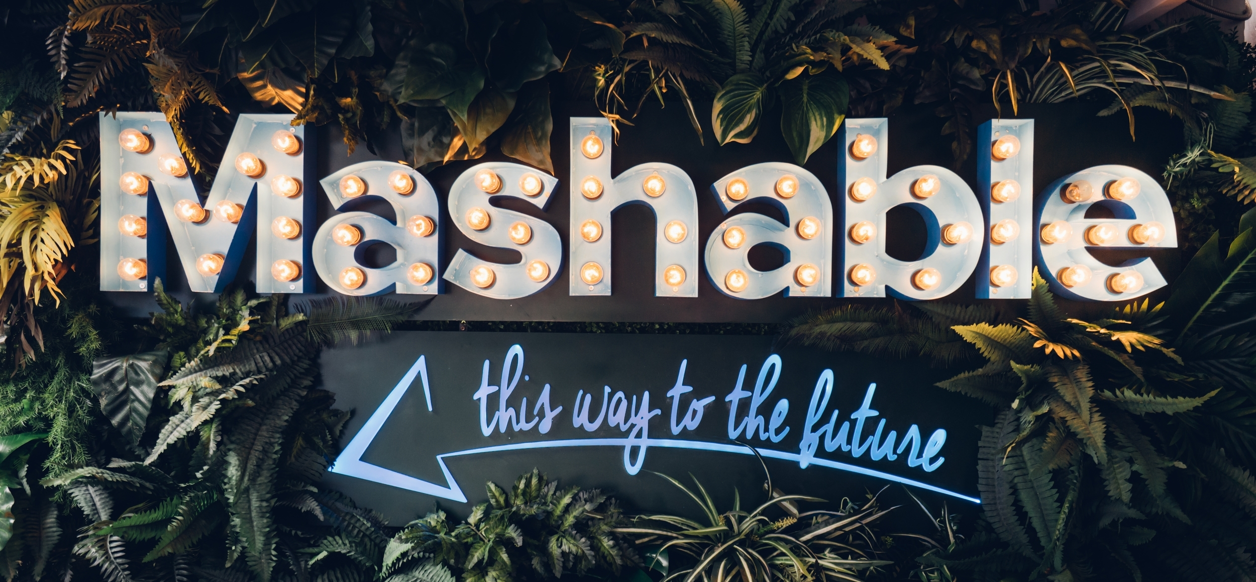 Mashable House