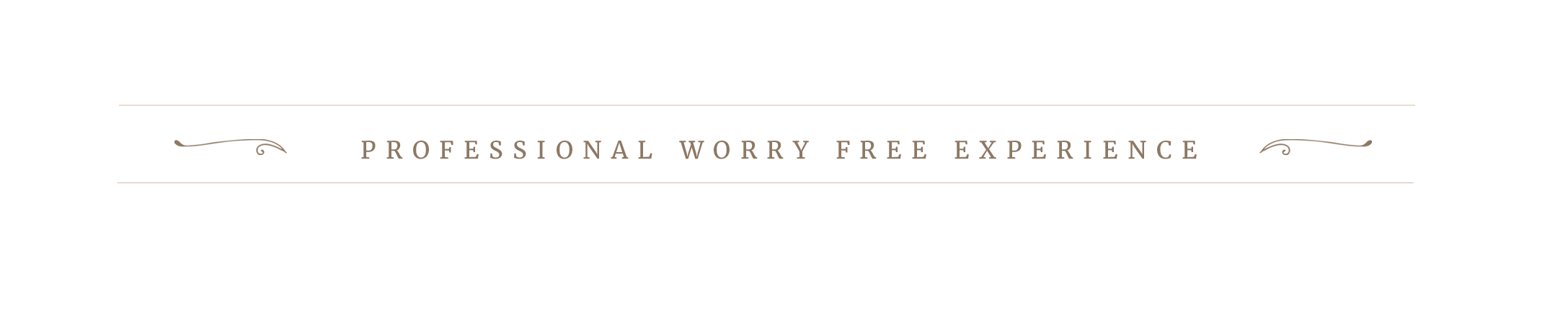 PROFESSIONAL WORRY FREE.png