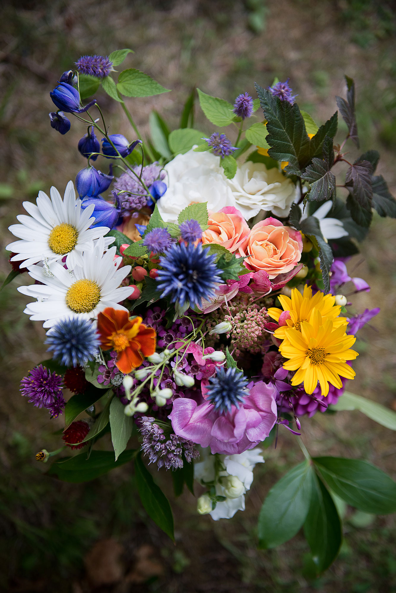 rose_bee_balm_black_eyed_susan_daisies_wedding_bouquet_perennia.jpg