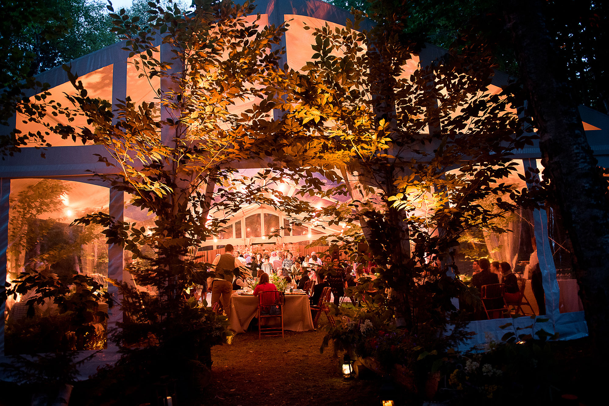 adirondack_tent_wedding_in_the_woods.jpg