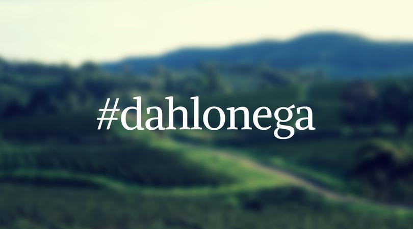#dahlonega (Instagram hashtag for Dahlonega, Georgia)