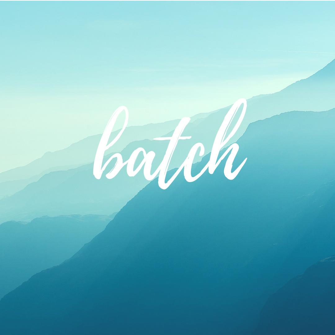"""batch"""