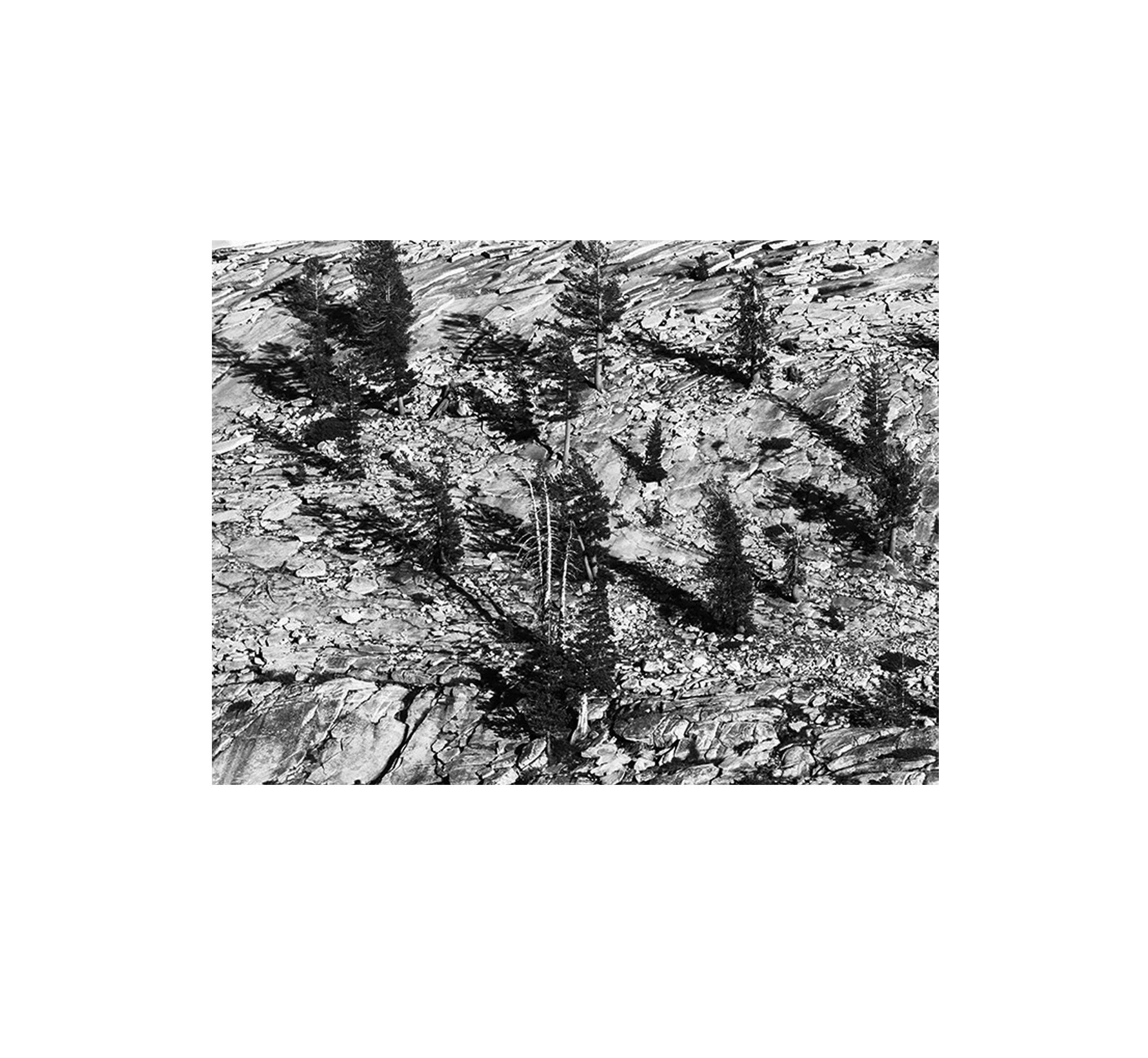 Hillside Patterns